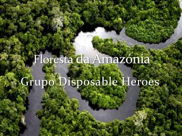 Grupo DisposableHeroes.<br />Floresta da Amazónia<br />