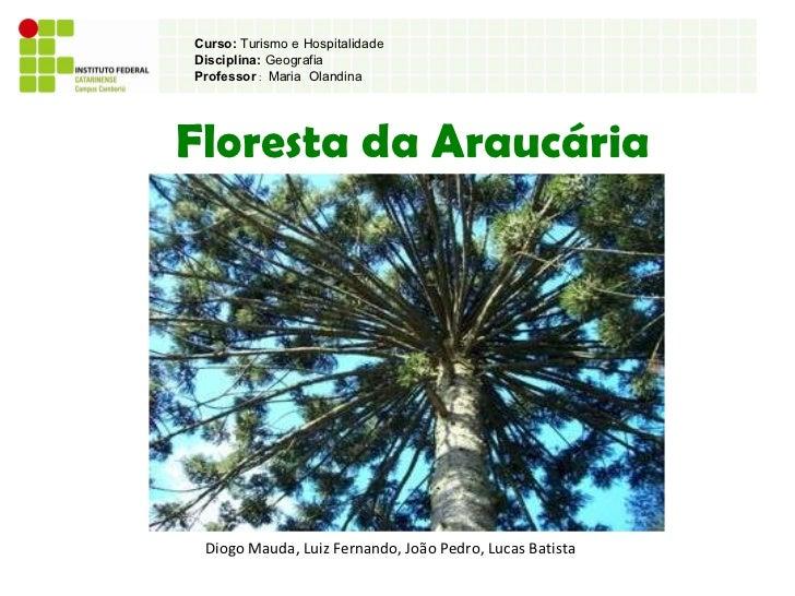 Floresta da Araucária Diogo Mauda, Luiz Fernando, João Pedro, Lucas Batista Curso:  Turismo e Hospitalidade Disciplina:  G...