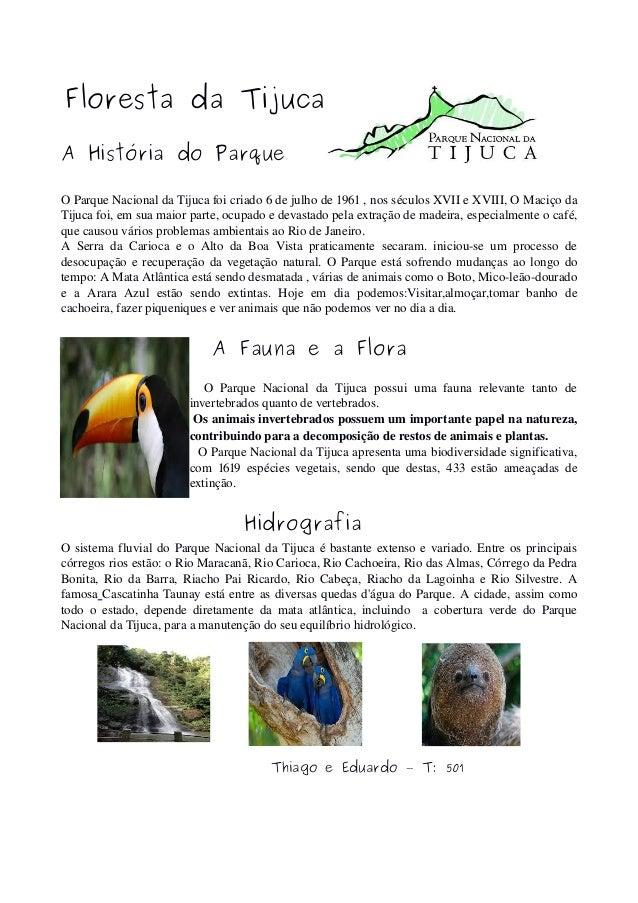 Floresta da Tijuca A História do Parque OParqueNacionaldaTijucafoicriado6dejulhode1961,nosséculosXVIIeXV...