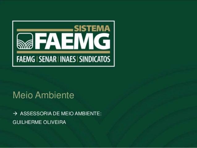 Meio Ambiente  ASSESSORIA DE MEIO AMBIENTE: GUILHERME OLIVEIRA