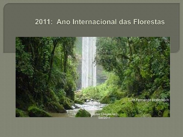 2011: Ano Internacional das Florestas<br />Luiz Fernando Hollerbach<br />Carlos Chagas-MG<br />Set/2011<br />