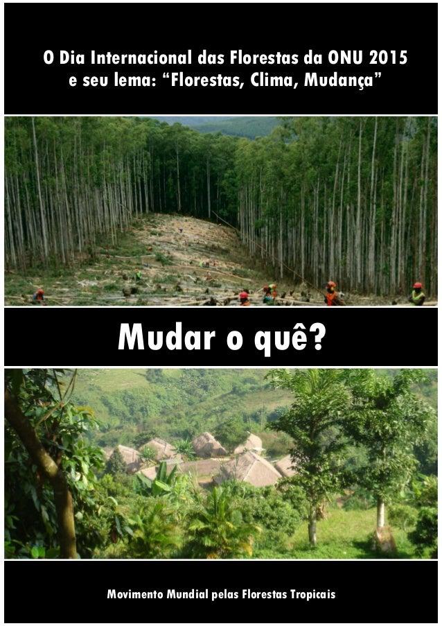 """O Dia Internacional das Florestas da ONU 2015 e seu lema: """"Florestas, Clima, Mudança"""" Mudar o quê? Documentoinformativod..."""