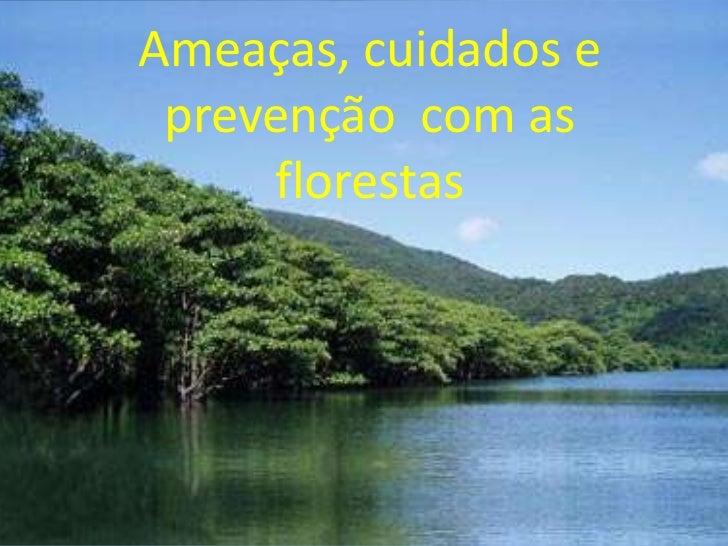 Ameaças, cuidados e prevenção com as     florestas