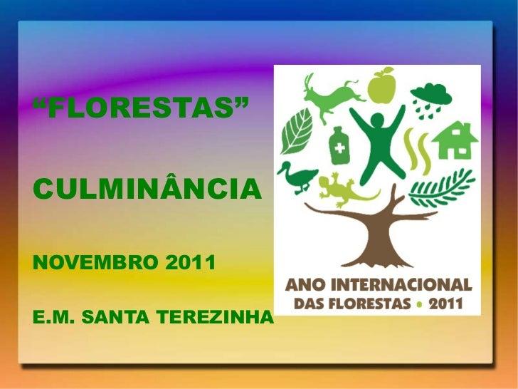 """ FLORESTAS"" CULMINÂNCIA NOVEMBRO 2011 E.M. SANTA TEREZINHA"