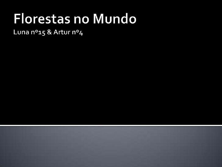 Florestas no MundoLuna nº15 & Artur nº4<br />