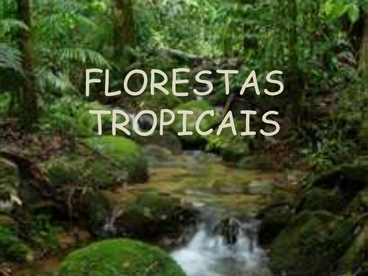 FLORESTASTROPICAIS
