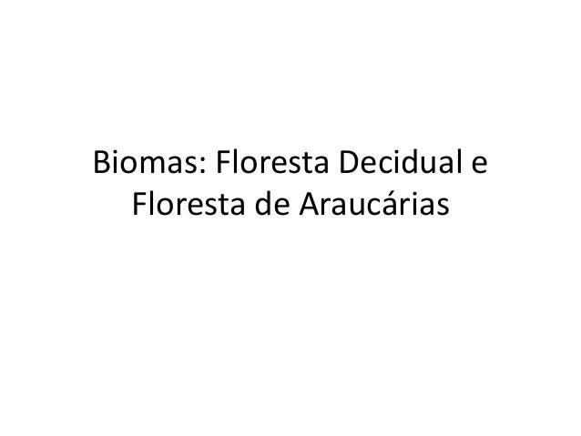 Biomas: Floresta Decidual e Floresta de Araucárias