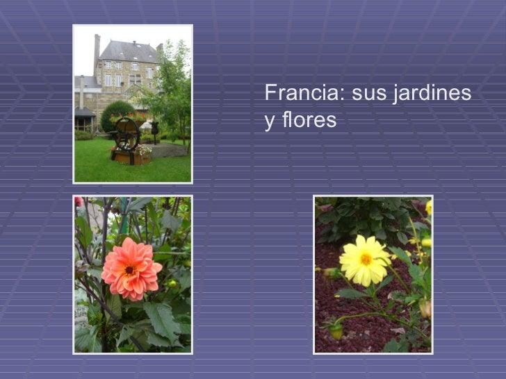 Flores y jardines franceses