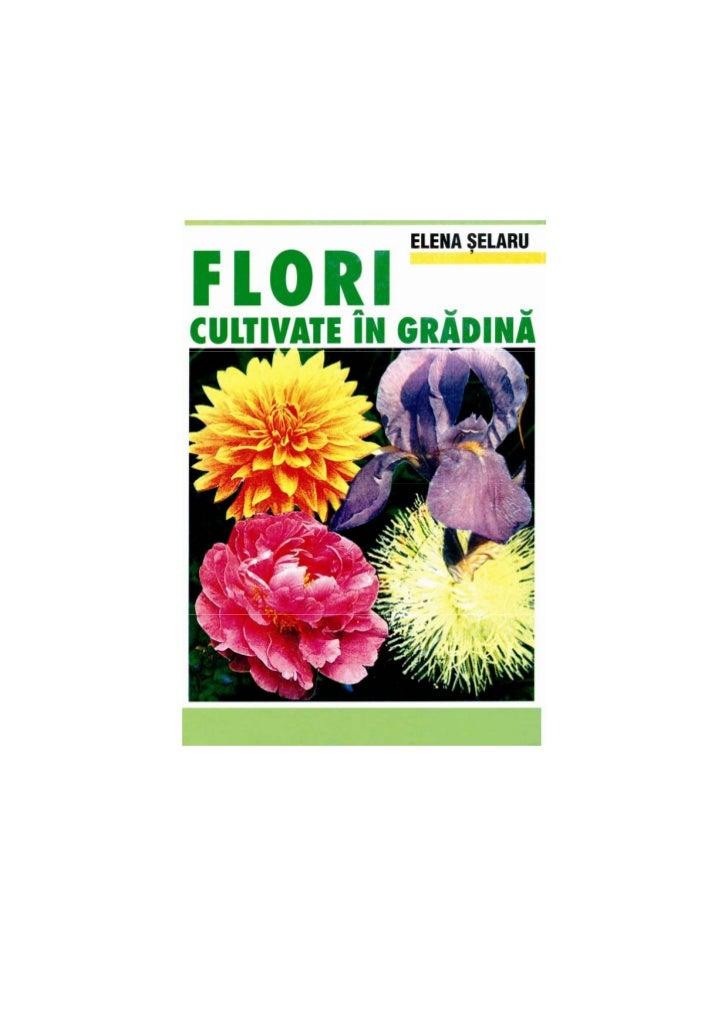 Descrierea CIP a Bibliotecii Naţionale a României               ŞELARU, ELENA           Flori cultivate în grădină /      ...