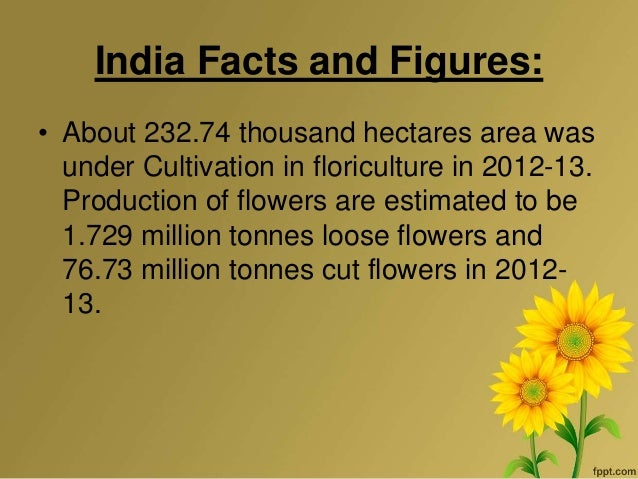 enterpeneurship in floriculture The entrepreneurship development institute of india (edii), an autonomous body and not-for-profit institution, set up in 1983, is sponsored by apex financial.