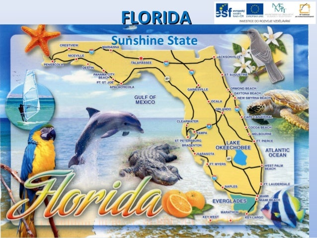 FLORIDAFLORIDA Sunshine State