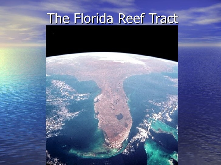 The Florida Reef Tract
