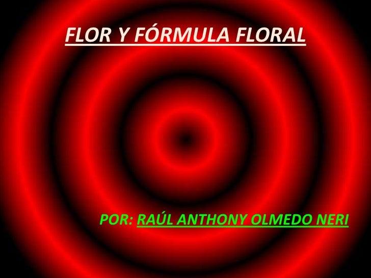 FLOR Y FÓRMULA FLORAL   POR: RAÚL ANTHONY OLMEDO NERI