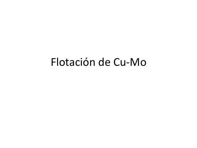 Flotación de Cu-Mo