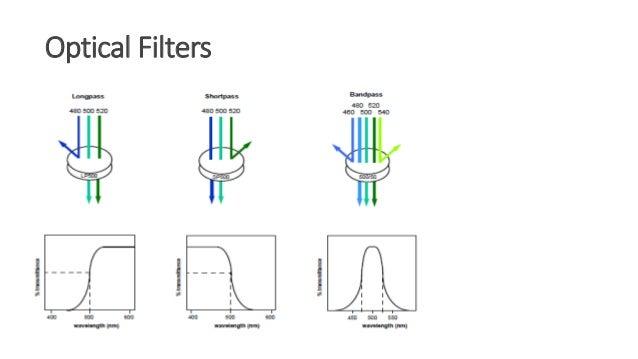 Flow Cytometry Quiz - MIT