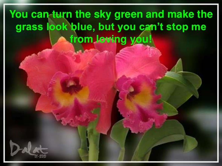 You can turn the sky green and make the grass look blue, but you can't stop me from loving you! <br />