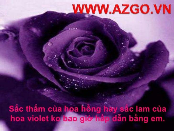 WWW.AZGO.VN<br />Sắc thắm của hoa hồng hay sắc lam của hoa violet ko bao giờ hấp dẫn bằng em. <br />