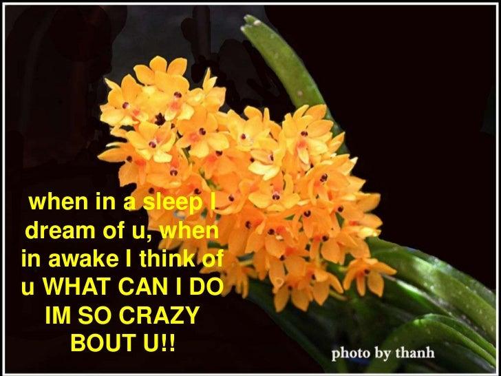when in a sleep I dream of u, when in awake I think of u WHAT CAN I DO IM SO CRAZY BOUT U!! <br />