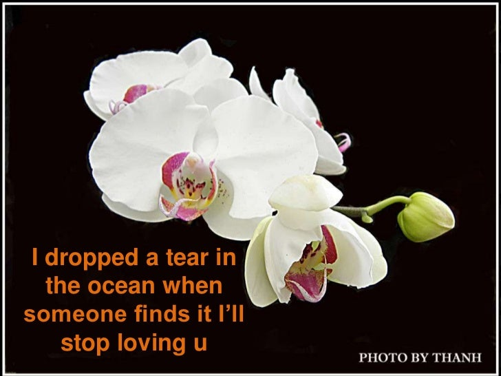 I dropped a tear in the ocean when someone finds it I'll stop loving u <br />