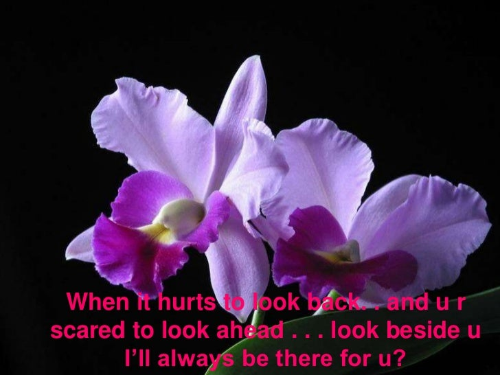 When it hurts to look back. . and u r scared to look ahead . . . look beside u I'll always be there for u? <br />