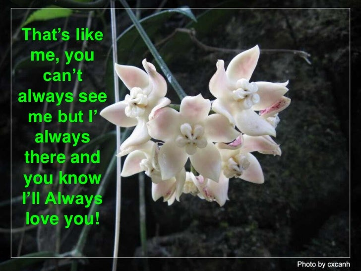 That's like me, you can't always see me but I' always there and you know I'll Always love you! <br />