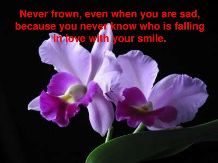 Never frown, even when you are sad, because you never know who is falling in love with your smile. <br />