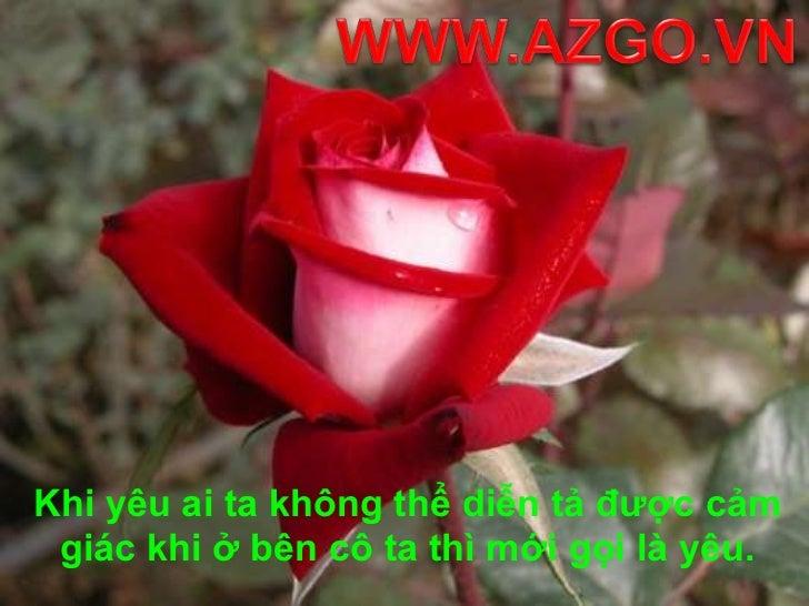 WWW.AZGO.VN<br />Khi yêu ai ta không thể diễn tả được cảm giác khi ở bên cô ta thì mới gọi là yêu. <br />