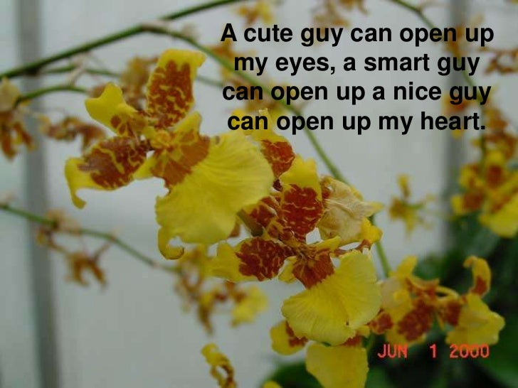 A cute guy can open up my eyes, a smart guy can open up a nice guy can open up my heart.<br />