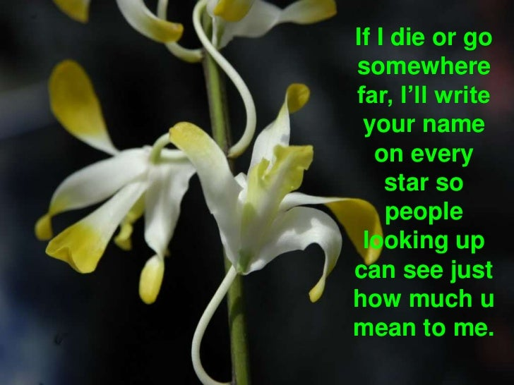 If I die or go somewhere far, I'll write your name on every star so people looking up can see just how much u mean to me. ...