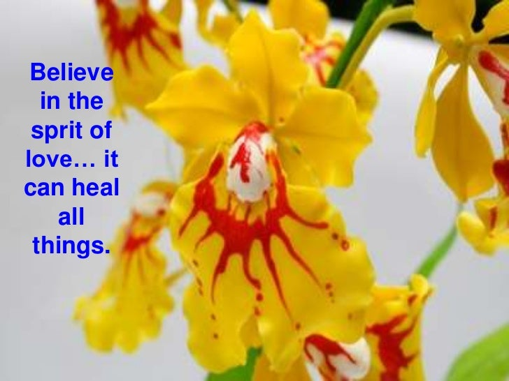 Believe in the sprit of love… it can heal all things. <br />