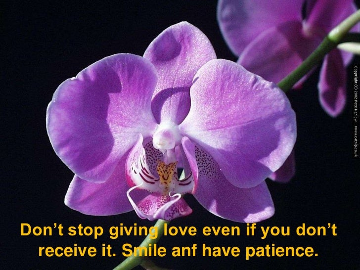 Don't stop giving love even if you don't receive it. Smile anf have patience.<br />