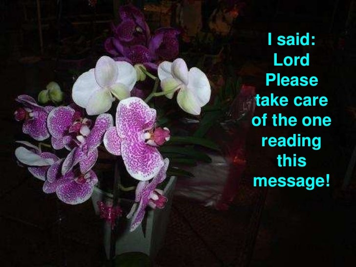 I said: Lord Please take care of the one reading this message! <br />