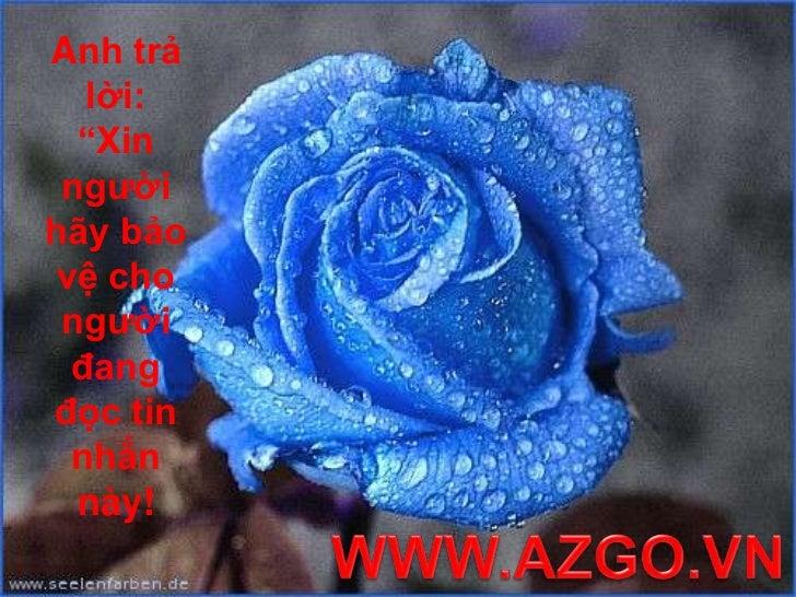 """Anh trả lời: """"Xin người hãy bảo vệ cho người đang đọc tin nhắn này! <br />WWW.AZGO.VN<br />"""
