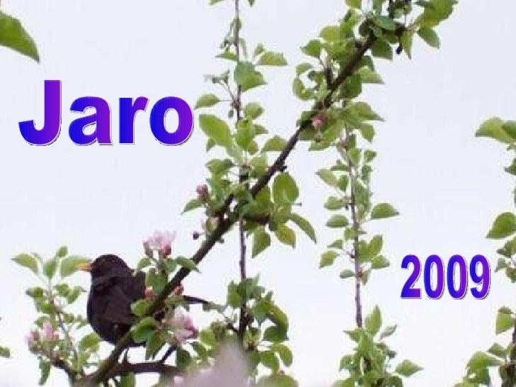 Jaro 2009