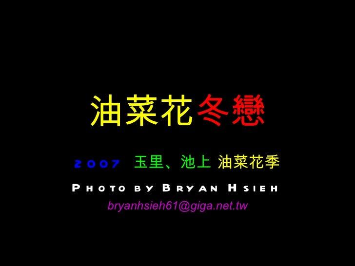 油菜花 冬戀 2007   玉里、池上  油菜花季 Photo by Bryan Hsieh [email_address]