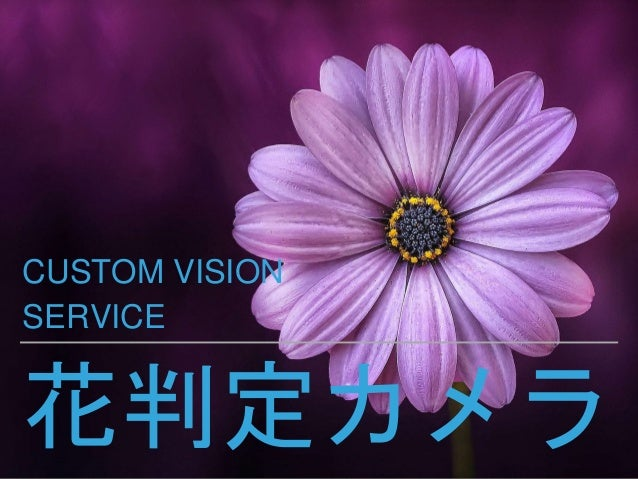 花判定カメラ CUSTOM VISION SERVICE