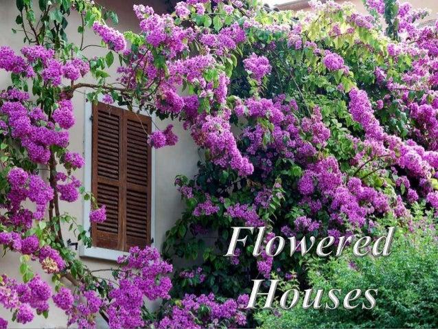 Flowered houses