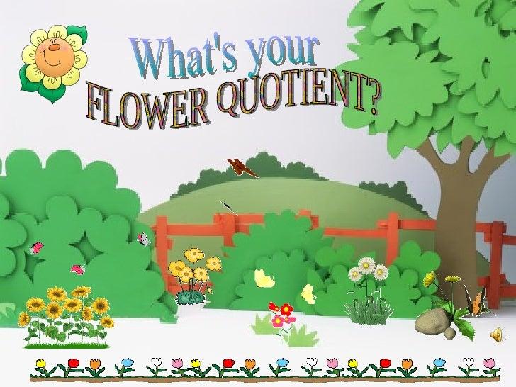 What's your FLOWER QUOTIENT?