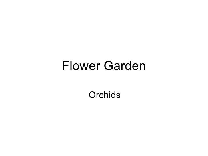 Flower Garden Orchids