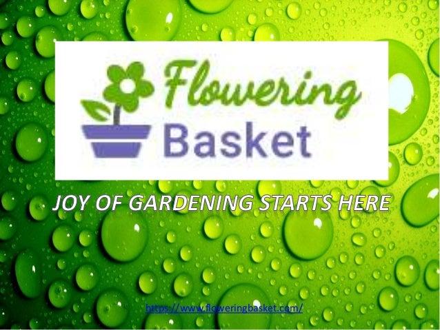 https://www.floweringbasket.com/