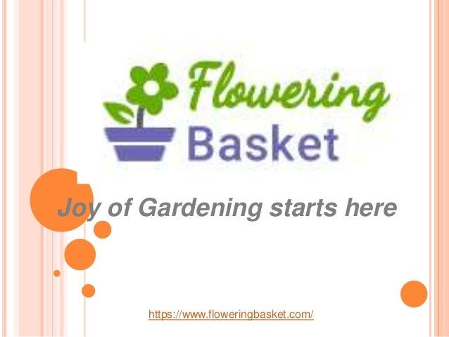 Joy of Gardening starts here https://www.floweringbasket.com/