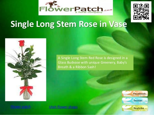 Single Long Stem Rose in Vase                    A Single Long Stem Red Rose is designed in a                    Glass Bud...