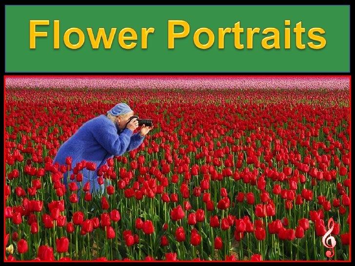 Flower Portraits<br />