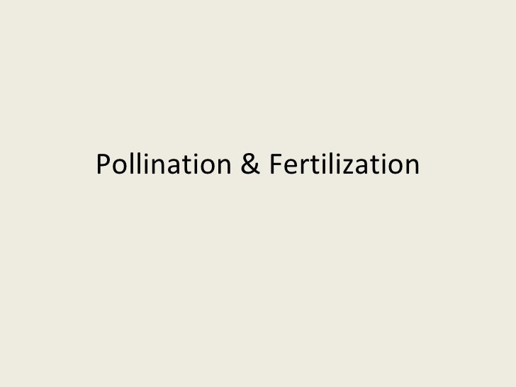 Pollination & Fertilization