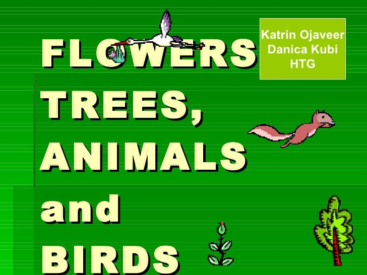 FLOWERS, TREES, ANIMALS and  BIRDS Katrin Ojaveer Danica Kubi HTG