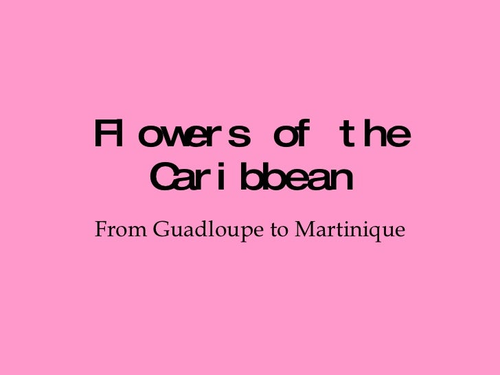 Flowers of the Caribbean From Guadloupe to Martinique