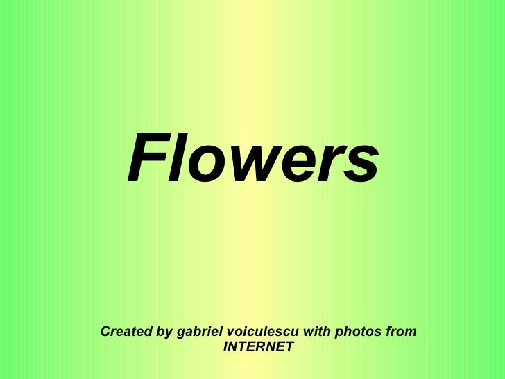 Flowers Created by gabriel voiculescu with photos from INTERNET