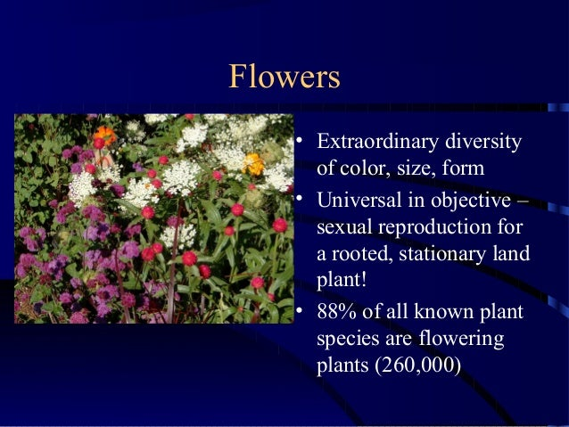 Flowers • Extraordinary diversity of color, size, form • Universal in objective – sexual reproduction for a rooted, statio...