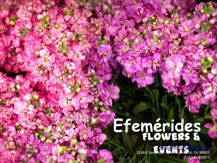 Efemérides<br />Flowers & Events<br />www.efemeridesflowers.com<br />12664 San Pablo Ave. Richmond, CA 94805 (510) 965-097...