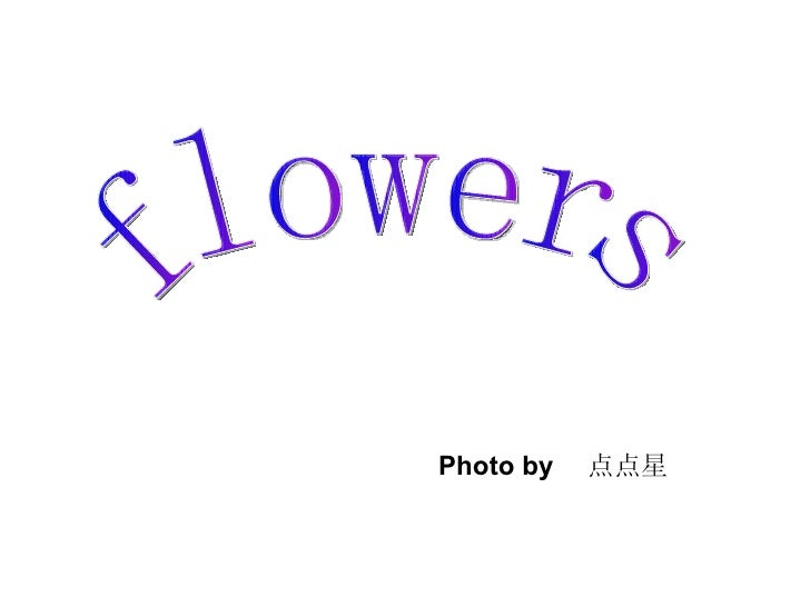 flowers Photo by  点点星